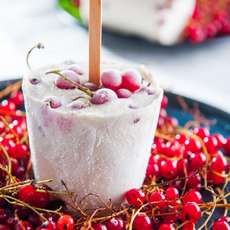 Popsicles домашнего мороженого с красной смородиной в плите с свежими ягодами Закройте вверх, селективный фокус стоковое изображение rf