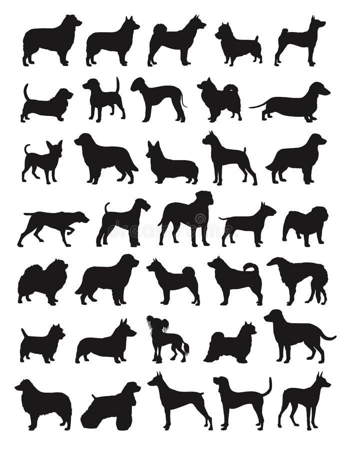 Populäre Hundebruten lizenzfreie abbildung