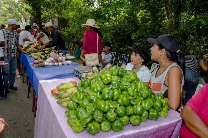 Populärer Markt in den Straßen von Isla Margarita stockfotografie