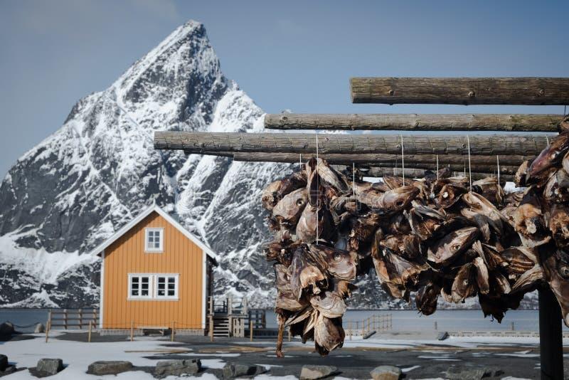 Populärt kabin med skarpt berg i bakgrunden, suddigt Torkställ av trä med strumpor i förgrunden Vanligen över t royaltyfria foton