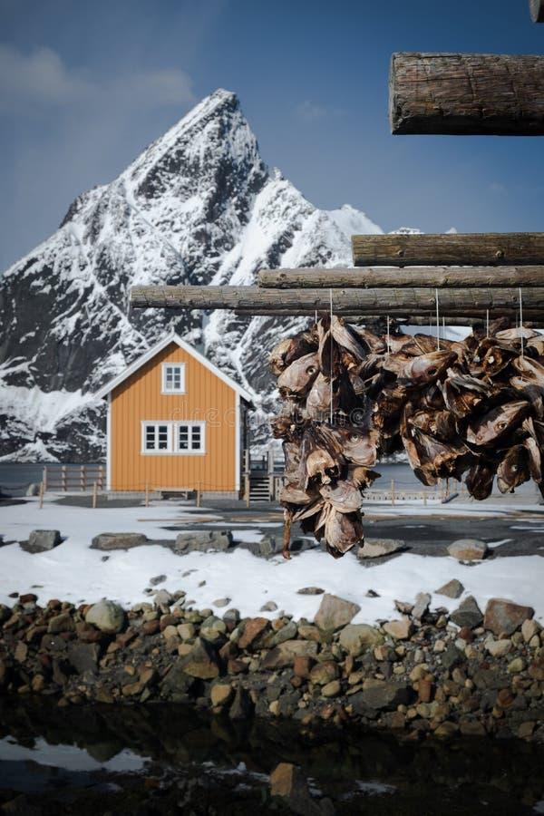 Populärt kabin med skarpt berg i bakgrunden, suddigt Torkställ av trä med strumpor i förgrunden Vanligen över t royaltyfri fotografi