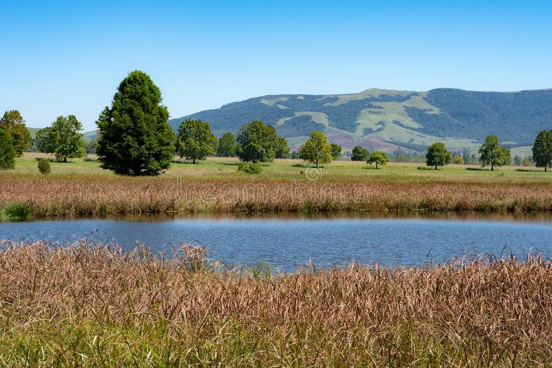 A popular bird watching lake in the Natal Midlands. A popular bird watching lake and background scenery in the Natal Midlands, South Africa stock photo