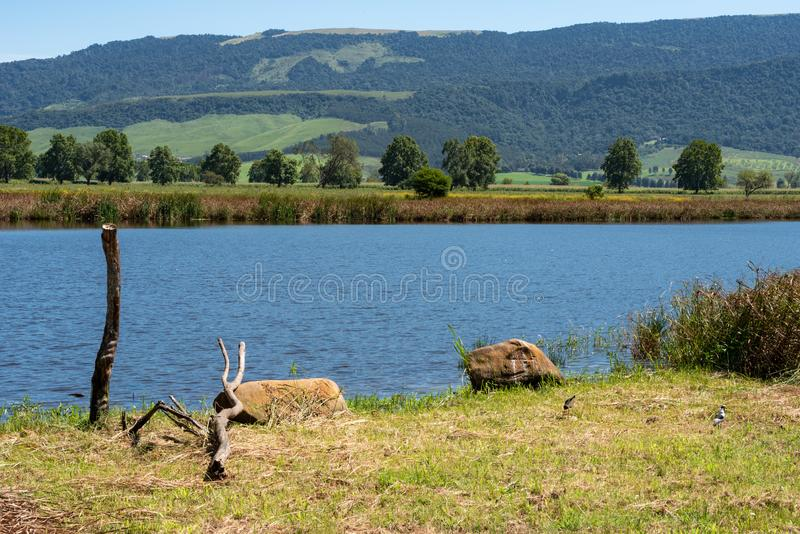 A popular bird watching lake in the Natal Midlands. A popular bird watching lake and background scenery in the Natal Midlands, South Africa royalty free stock images
