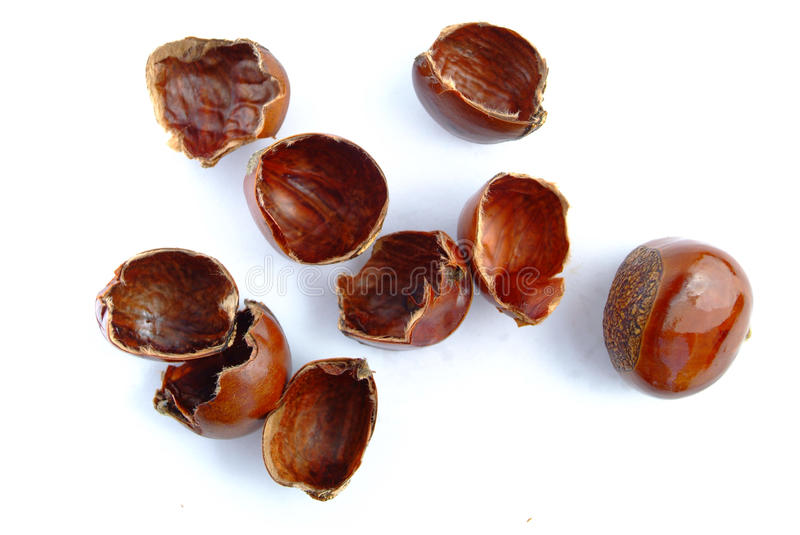 Popular Chinese snack stir fried chestnuts. Open chestnut on white background. Isolation of the Popular Chinese snack stir fried chestnuts with sugar royalty free stock photos