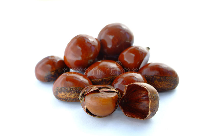 Popular Chinese snack stir fried chestnuts. Open chestnut on white background. Isolation of the Popular Chinese snack stir fried chestnuts with sugar stock photos