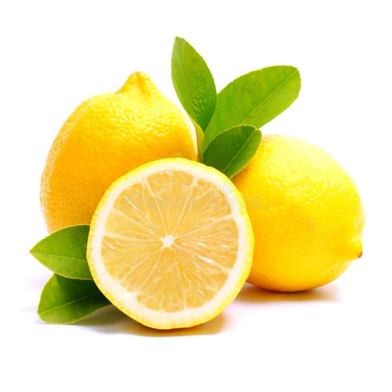 Por completo del limón brillante, fresco imagen de archivo