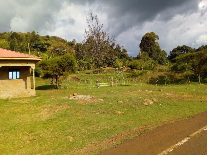 Por deszczowa spojrzenia góra Elgon w Afryka obrazy stock