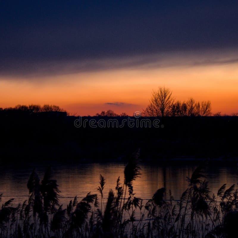 Por do sol acima dos juncos das cores de Zlicin foto de stock