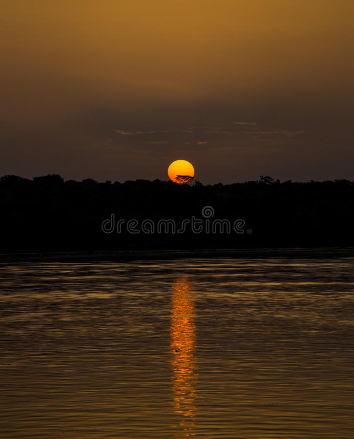 Por do sol africano foto de stock royalty free