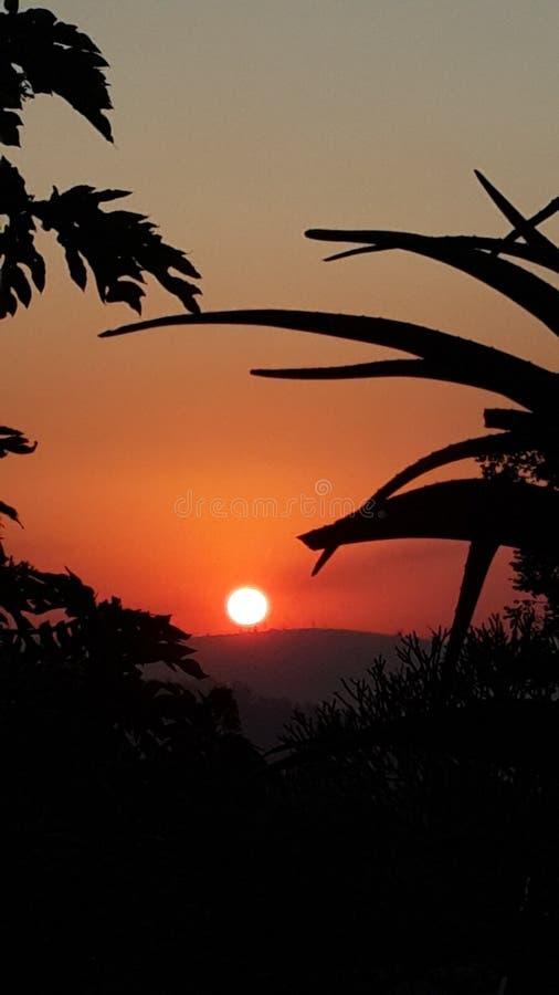 Por do sol africano foto de stock