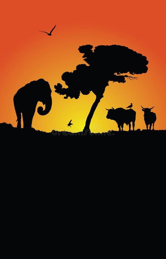 Por do sol africano ilustração royalty free
