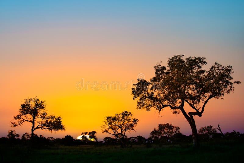 Por do sol africano em África do Sul foto de stock royalty free
