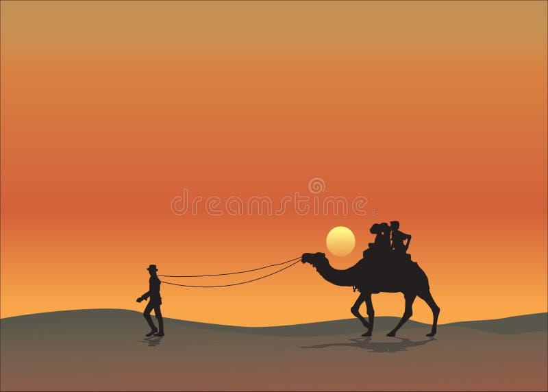 Por do sol alaranjado do fundo do deserto do camelo imagem de stock royalty free