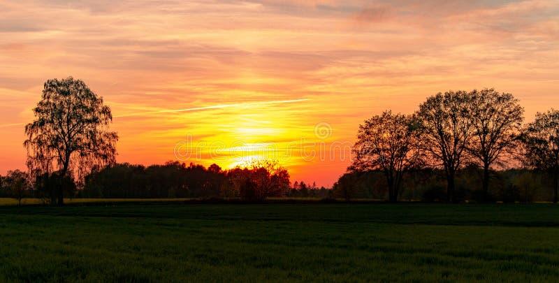 Por do sol atrás dos tres e do campo fotografia de stock royalty free