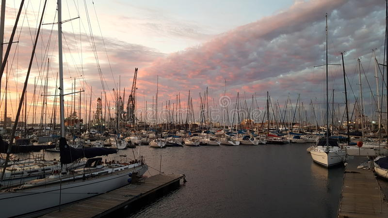 Por do sol através do yacht club real do cabo imagens de stock royalty free