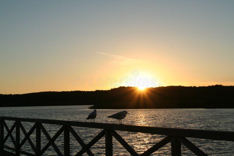 Por do sol Báltico da costa foto de stock