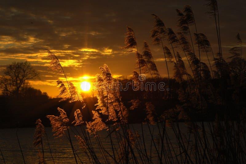 Por do sol bonito com cores fantásticas fotografia de stock