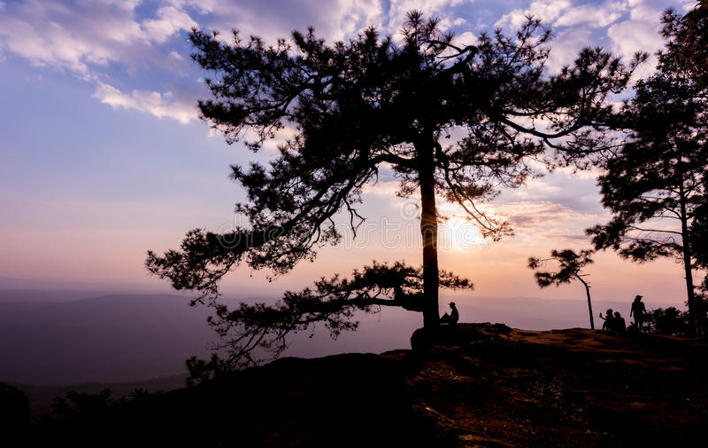 Por do sol bonito com viajante e pinheiro da silhueta em Lom S foto de stock royalty free