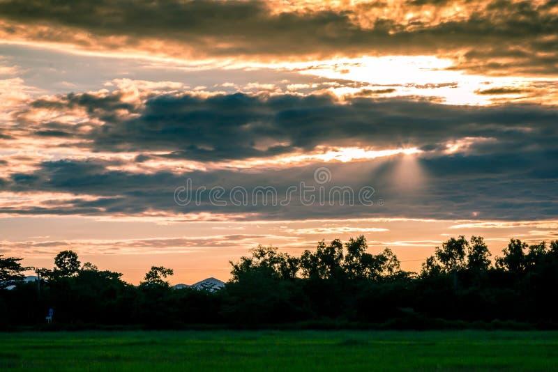 Por do sol bonito e nuvens escuras em campos do arroz com árvores e b fotos de stock