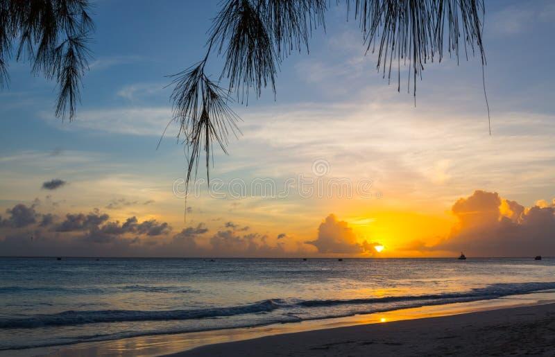 Por do sol bonito em uma praia tropical foto de stock