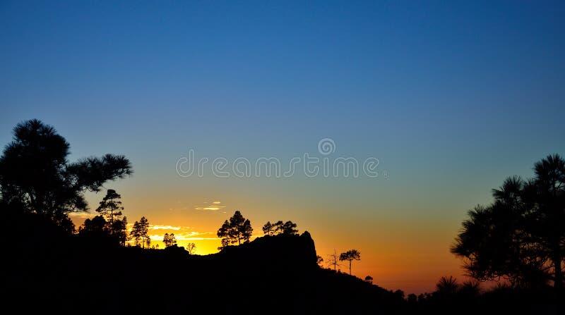Download Por Do Sol Bonito Entre Os Pinhos, Gran Canaria Foto de Stock - Imagem de noite, paisagem: 107528688
