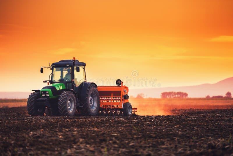 Por do sol bonito, fazendeiro no trator que prepara a terra com cultivador da sementeira imagem de stock