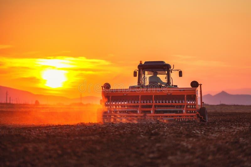 Por do sol bonito, fazendeiro no trator que prepara a terra com cultivador da sementeira fotografia de stock