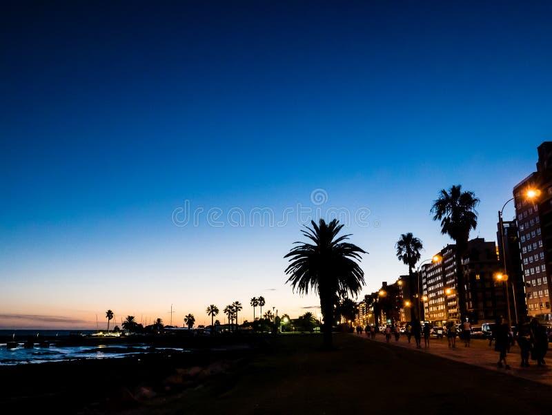 Por do sol bonito do inclinação com palmeiras e construção, Montevid foto de stock royalty free