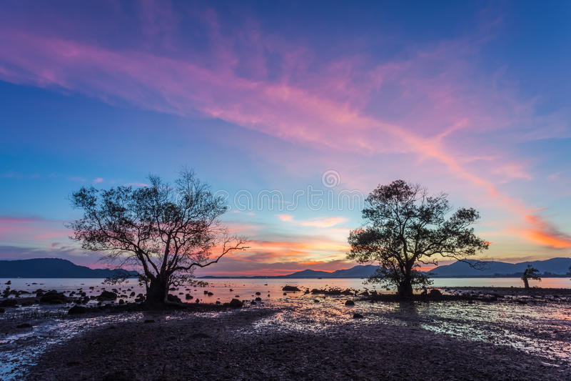 Por do sol bonito no céu, nas pedras da silhueta e nas árvores crepusculares em Khao Khad, Phuket, Tailândia foto de stock