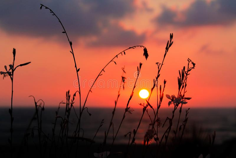 Por do sol bonito no litoral foto de stock