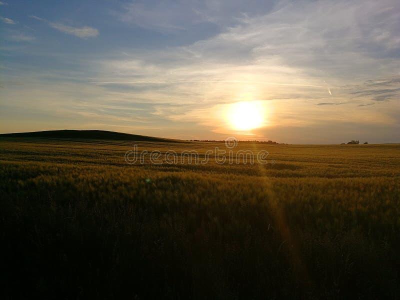 Por do sol bonito no verão imagem de stock
