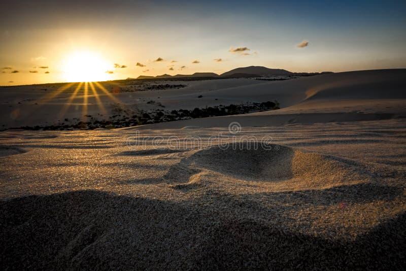 Por do sol bonito sobre as areias do deserto no parque natural foto de stock royalty free