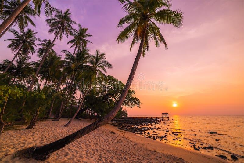 Por do sol bonito sobre o mar com uma vista nas palmas foto de stock