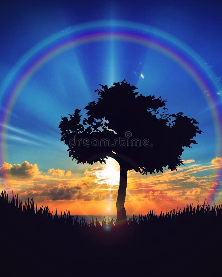 Por do sol bonito sobre a paisagem da natureza do céu do arco-íris da silhueta da árvore da água fotografia de stock royalty free