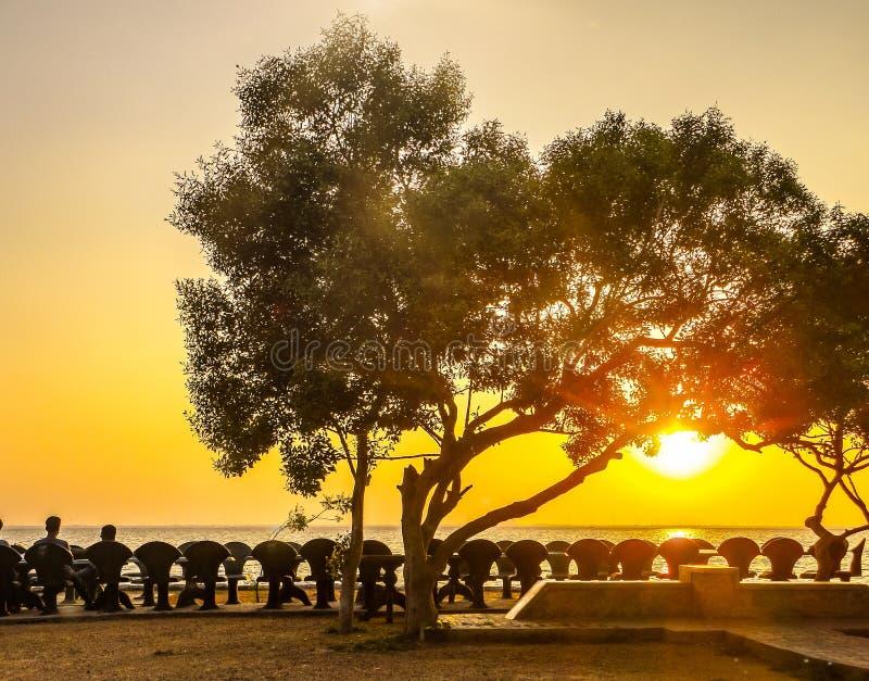 Por do sol: céu amarelo imagem de stock royalty free