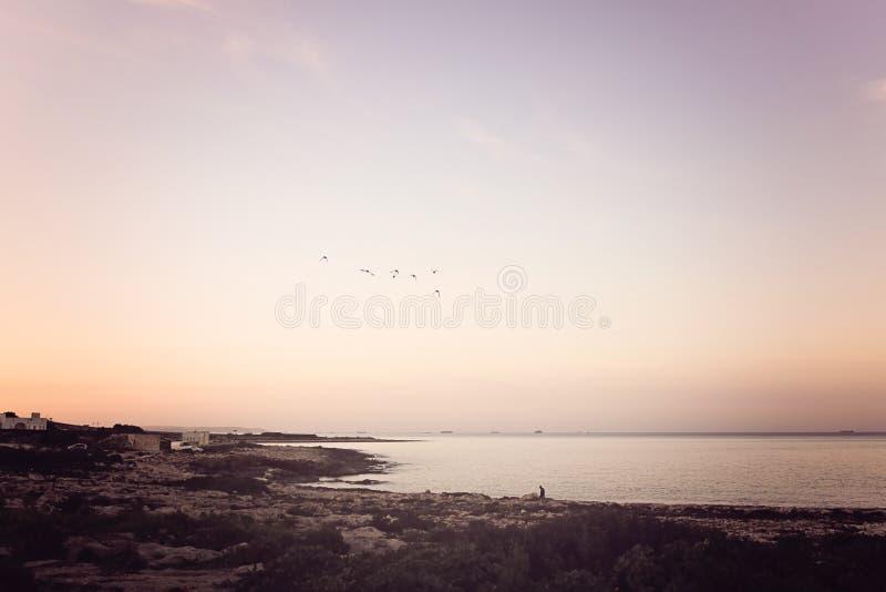 Por do sol calmo sobre a costa de Malta foto de stock