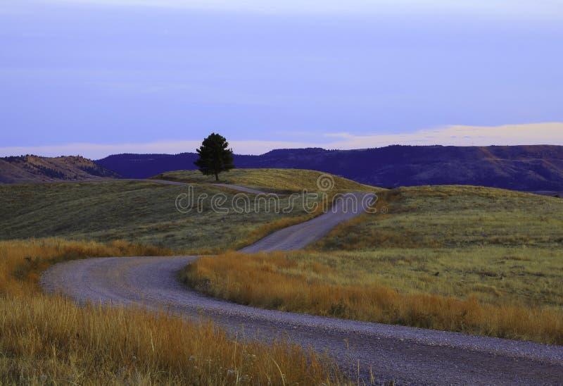 Por do sol da estrada de terra fotografia de stock royalty free
