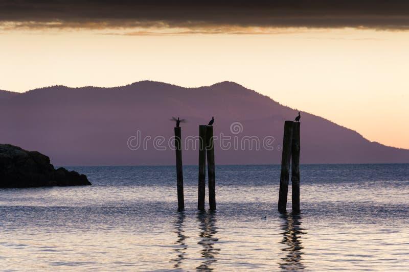 Por do sol da ilha imagens de stock