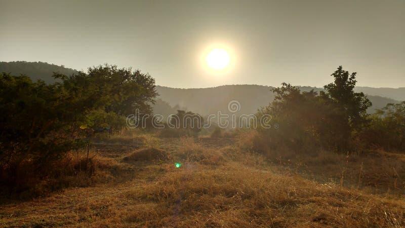 Por do sol da natureza fotografia de stock