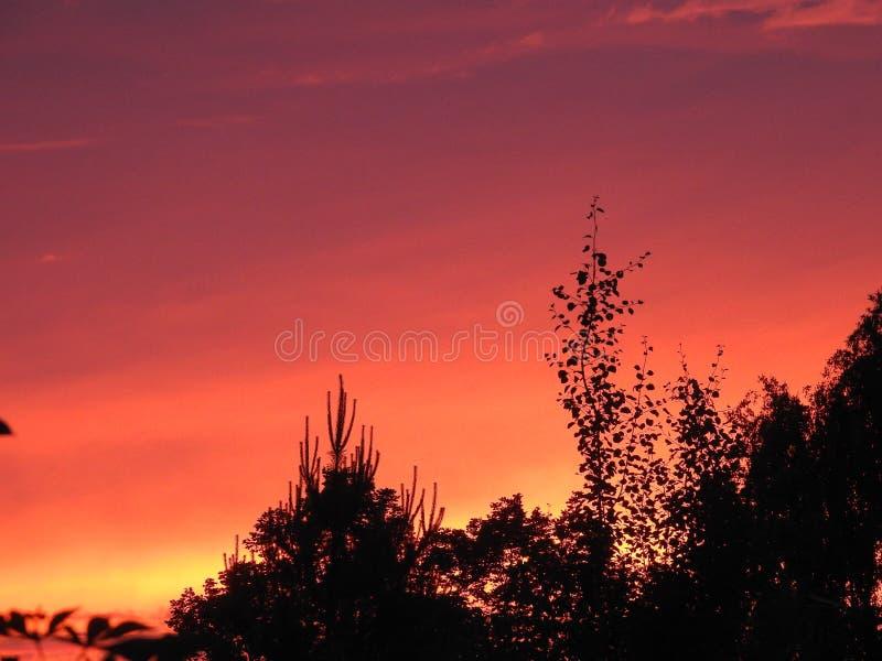 Por do sol da noite do russo fotos de stock