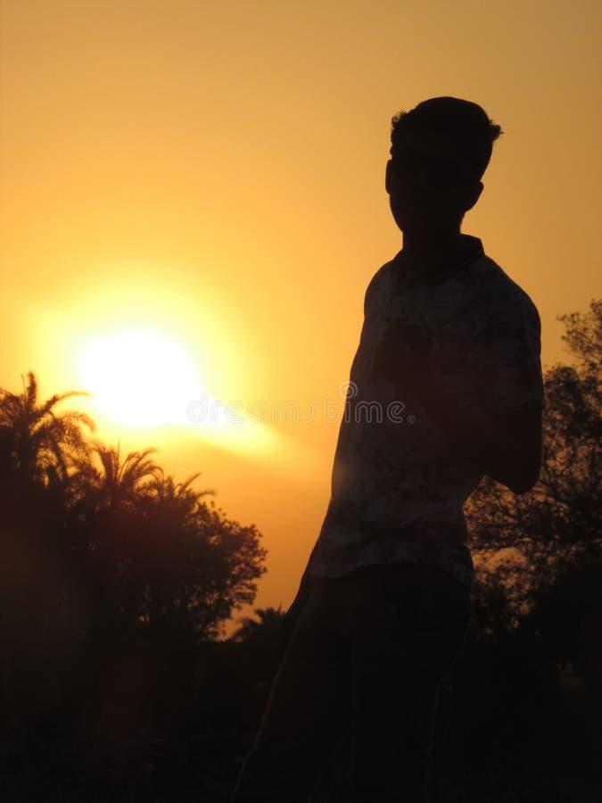 Por do sol da noite da silhueta fotografia de stock