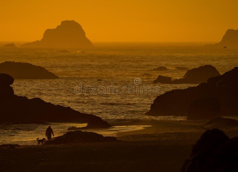 Por do sol da praia de Oregon imagem de stock