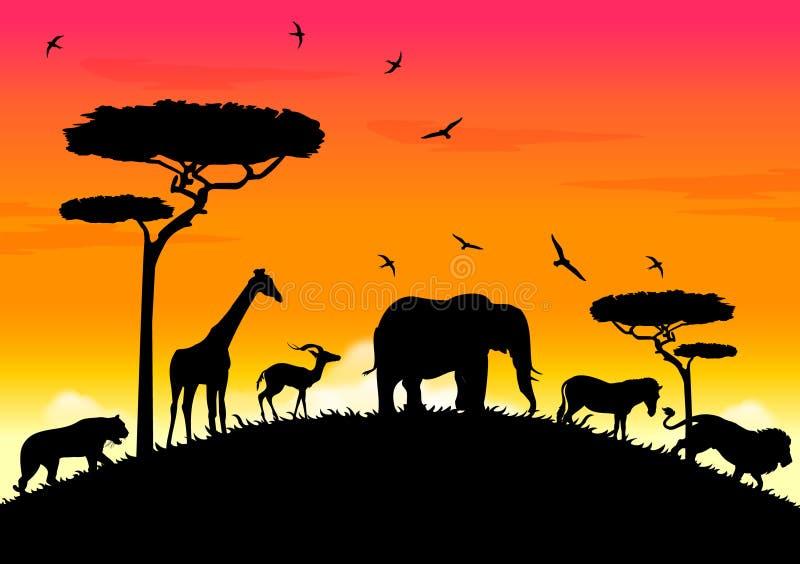 por do sol de África ilustração do vetor