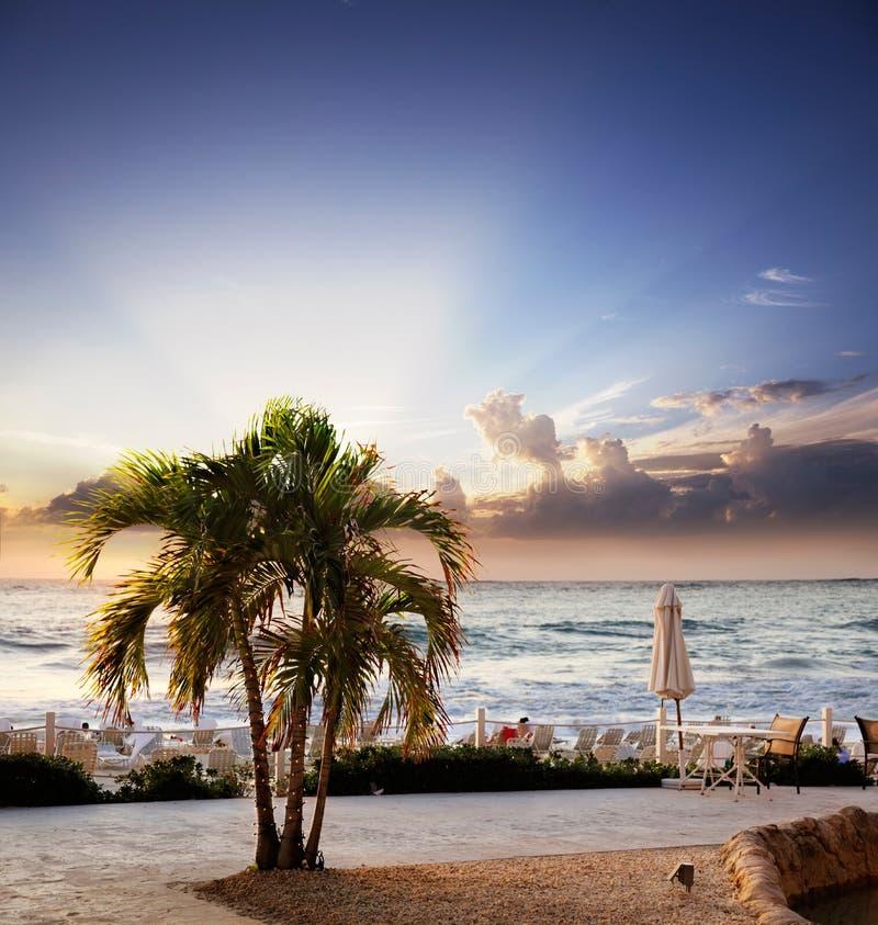 Por do sol de Cayman Islands foto de stock