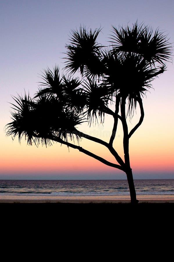 Por do sol de Gold Coast foto de stock