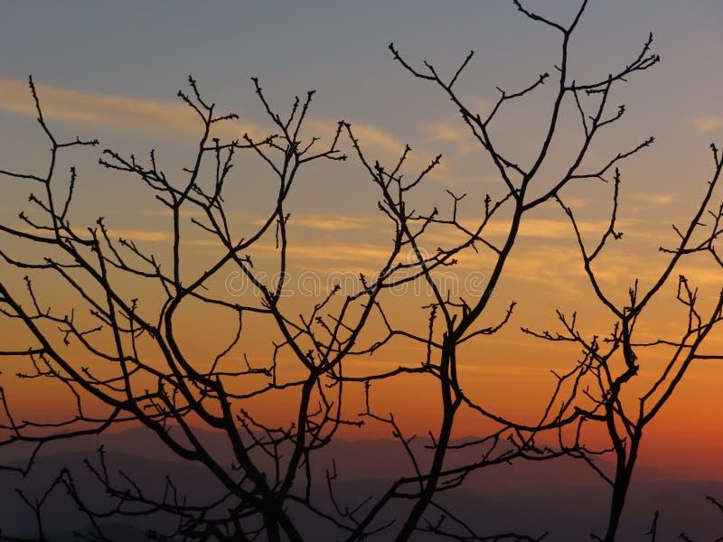 Por do sol de himalaya fotografia de stock