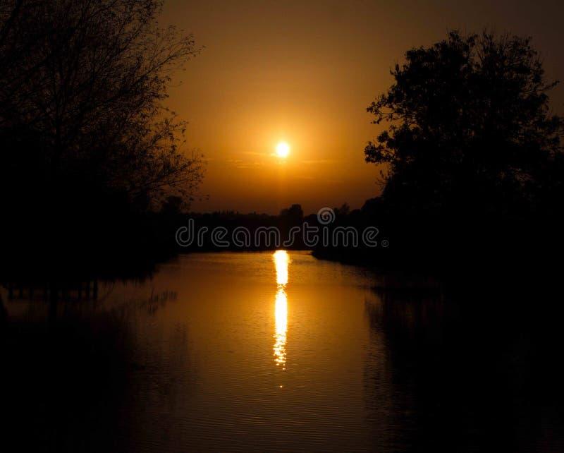 Por do sol de incandescência aturdindo bonito sobre o céu do lago e o silhoue da árvore foto de stock royalty free