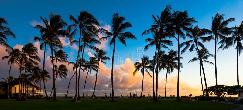 Por do sol de Kauai imagens de stock royalty free