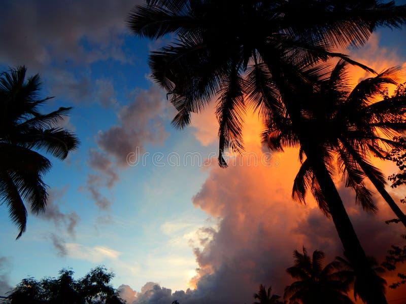 Por do sol de kerala foto de stock