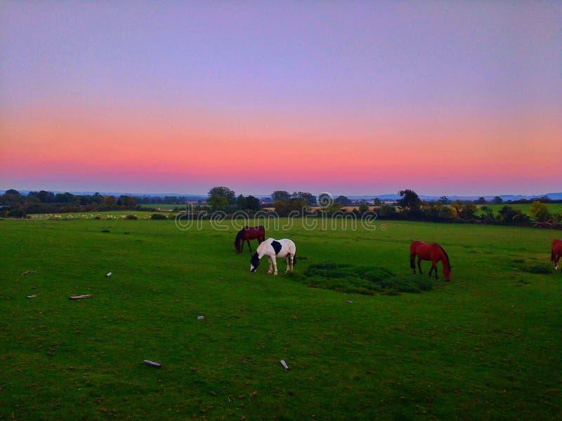 Por do sol de Leamington Hastings fotos de stock royalty free